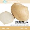 Неделя 32 - мексиканский картофель