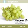 Неделя 10 - виноградинка