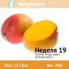 Неделя 19 - манго